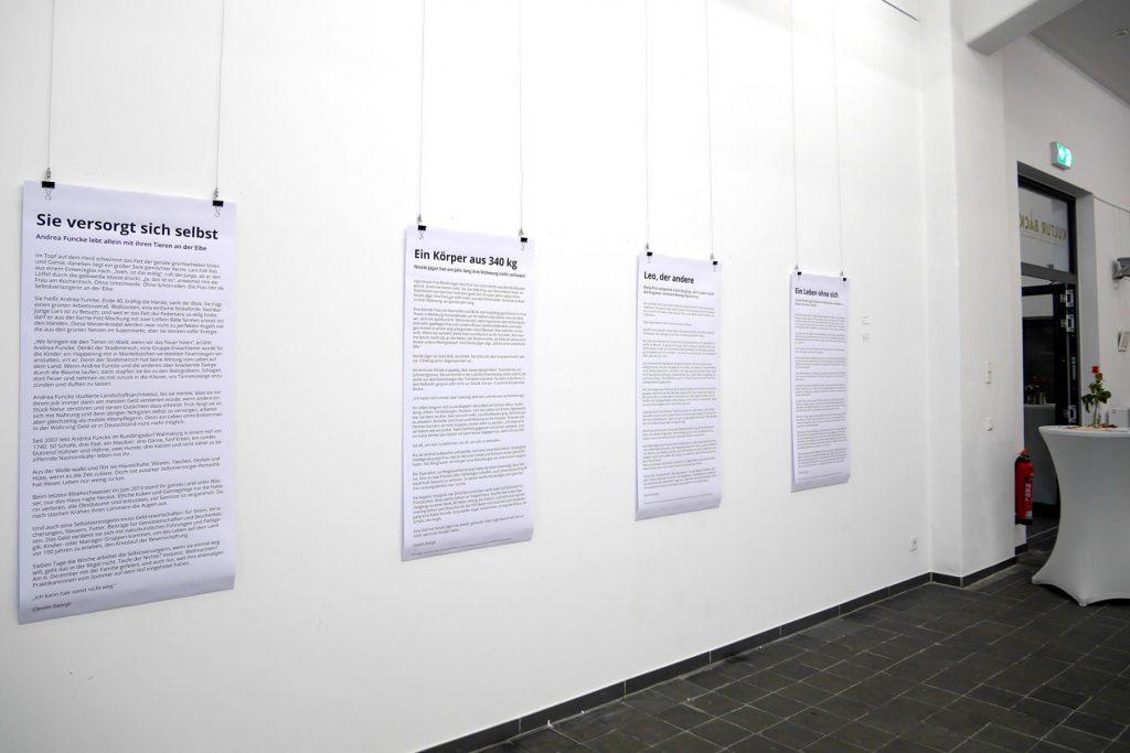 Gruppenausstellung MonoSapiens KulturBäckerei Lüneburg, 2016